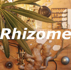 Rhizome Dub, Couverture CD, 2005